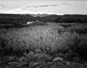 Big Bend Rio Grande Village area_BW_dN_DMa.jpg